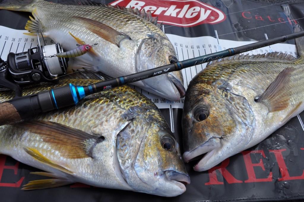 Berkley | Berkley Fishing